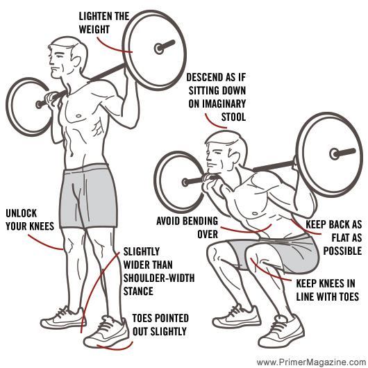 8Exercises_squat