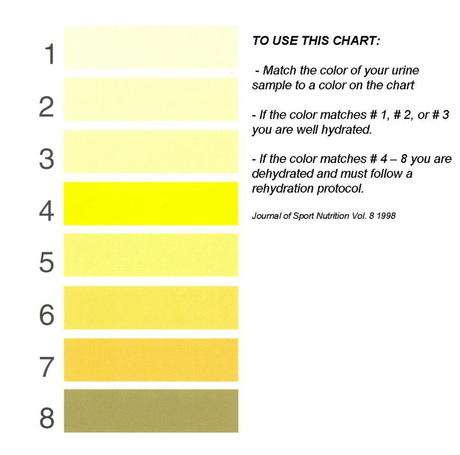 urine_color_chart